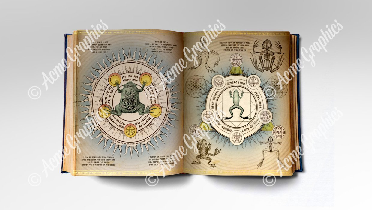 Frog and toad spellbook