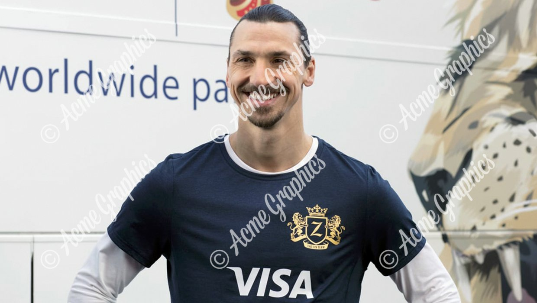 Zlatan visa t-shirt